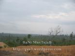 bengalon forest2-banimustajab